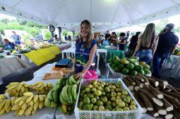 Procura por produtos orgânicos cresce no Amazonas
