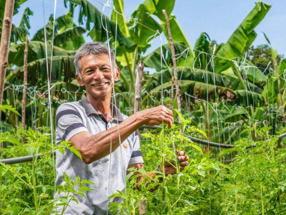 'Fala Produtor' é o canal do Sistema Sepror para atendimento ao setor primário no Amazonas
