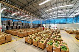 Governo do Amazonas adquire mais 66 toneladas de alimentos de produtores rurais