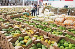 ADS compra mais 82 toneladas de alimentos para doação a pessoas em situação de vulnerabilidade