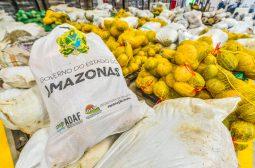 Governo do Amazonas adquire mais 67 toneladas de alimentos de produtores rurais